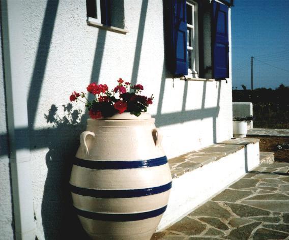 Amphora with geraniums